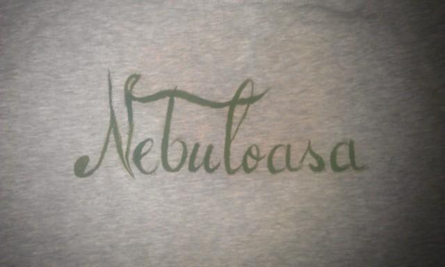 Tricou nebulos - spate