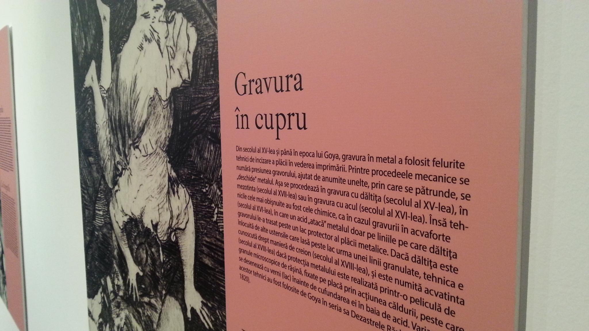 Gravuri Goya Timisoara