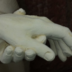 hand-bear-serve-fragile-love-admiration-attention